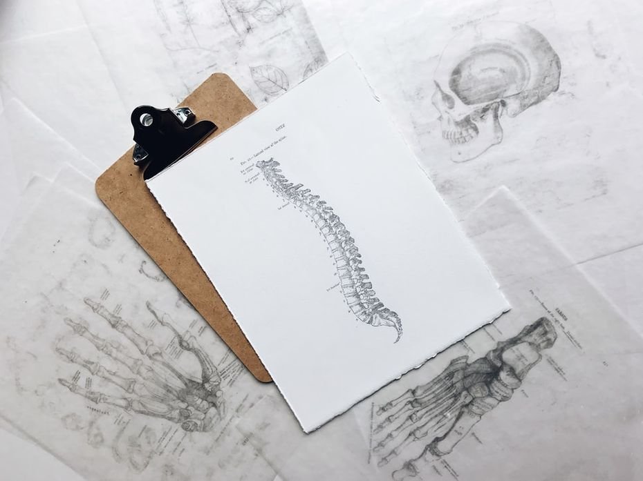 Drawing of a spinal cord on a clipboard - Tracy Chiropractic
